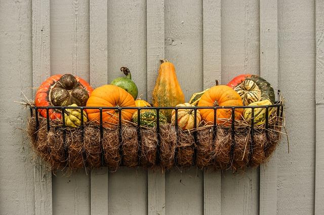 calabaza-otoño-productos-de-temporada